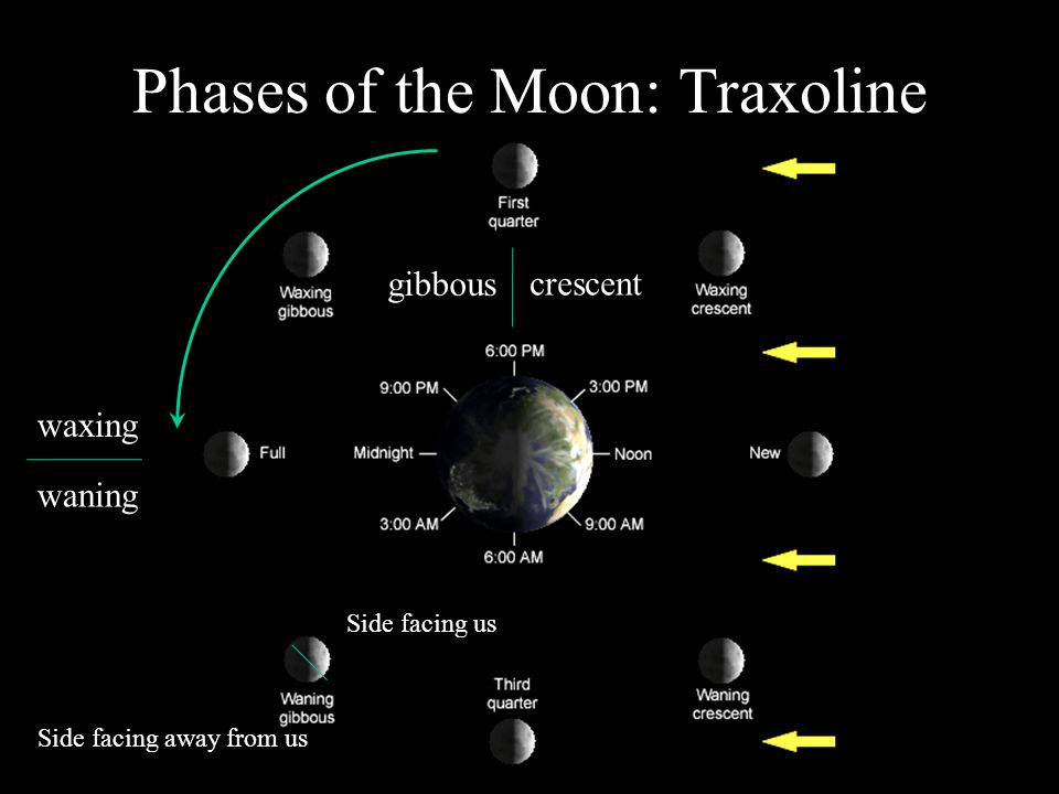 Phases of the Moon: Traxoline Side facing us Side facing away from us gibbous waning crescent waxing