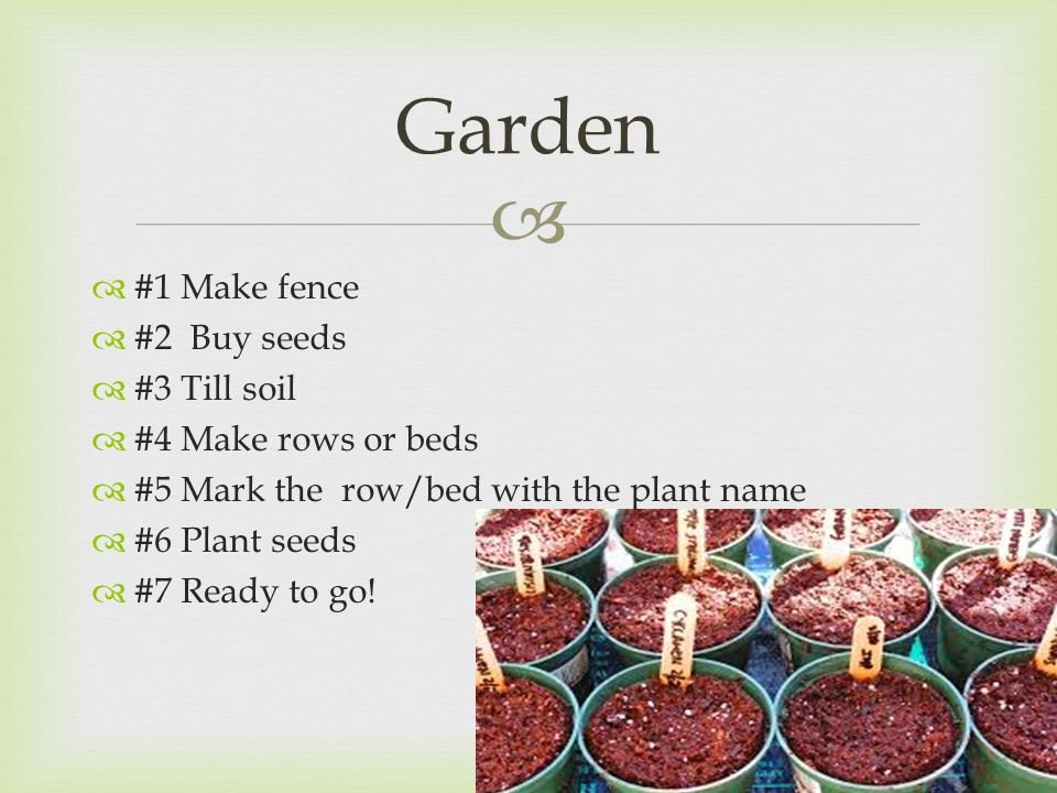   #1 Make fence  #2 Buy seeds  #3 Till soil  #4 Make rows or beds  #5 Mark the row/bed with the plant name  #6 Plant seeds  #7 Ready to go.