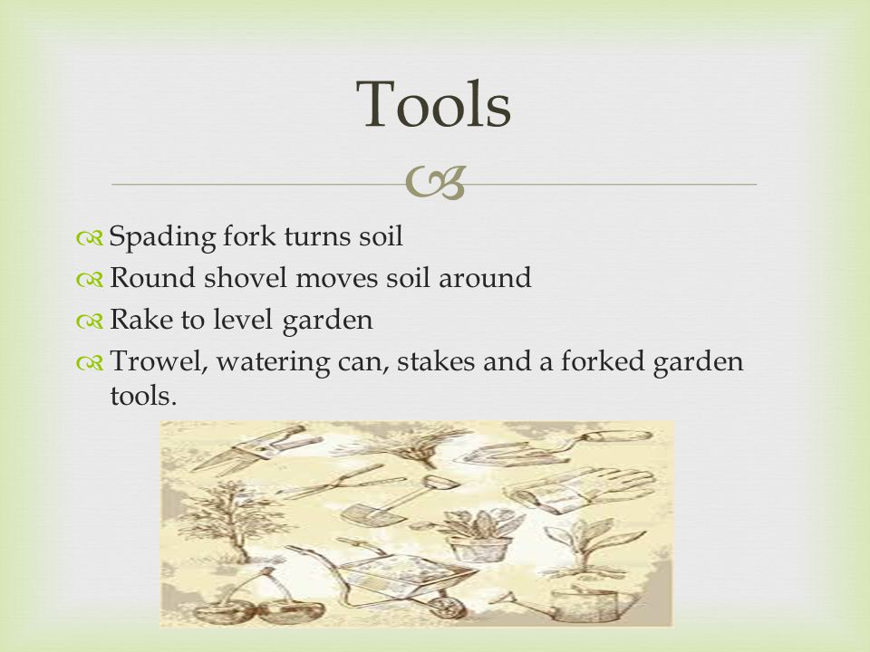   Spading fork turns soil  Round shovel moves soil around  Rake to level garden  Trowel, watering can, stakes and a forked garden tools.