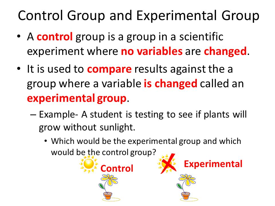 Control Group and Experimental Group A control group is a group in a scientific experiment where no variables are changed.