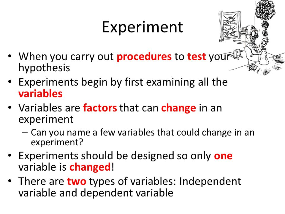 Experiment When you carry out procedures to test your hypothesis Experiments begin by first examining all the variables Variables are factors that can change in an experiment – Can you name a few variables that could change in an experiment.