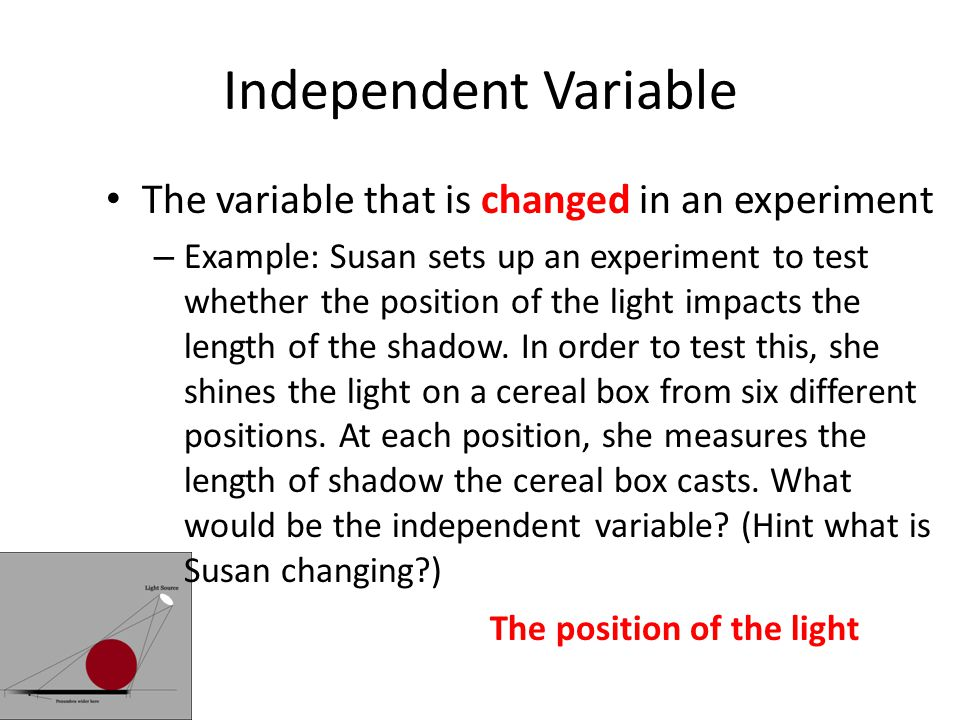 Independent Variable The variable that is changed in an experiment – Example: Susan sets up an experiment to test whether the position of the light impacts the length of the shadow.