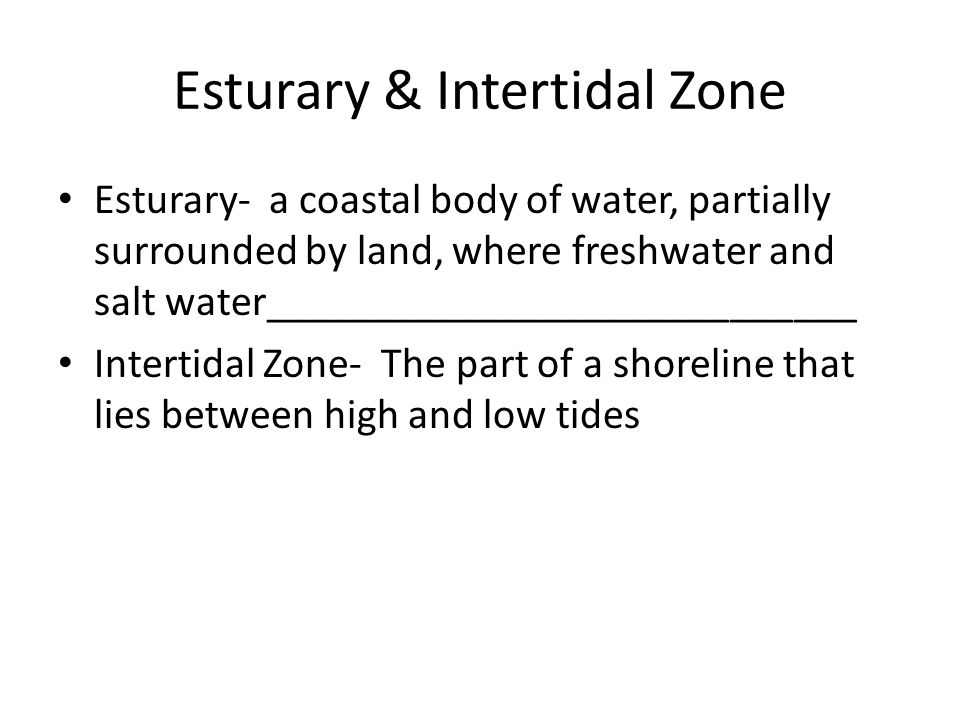 Esturary & Intertidal Zone Esturary- a coastal body of water, partially surrounded by land, where freshwater and salt water___________________________