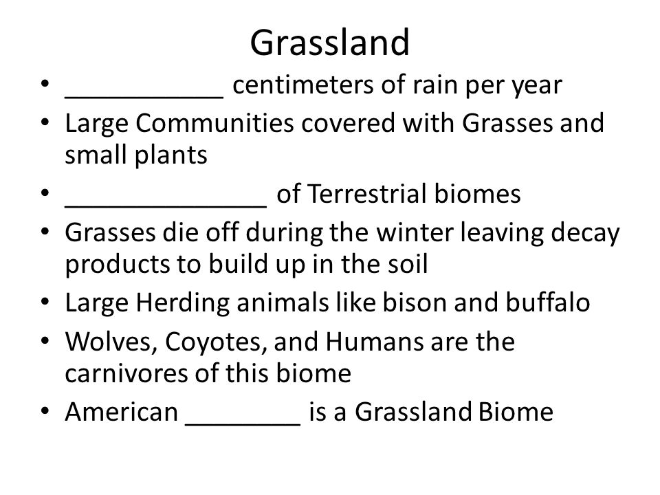 Grassland ___________ centimeters of rain per year Large Communities covered with Grasses and small plants ______________ of Terrestrial biomes Grasse