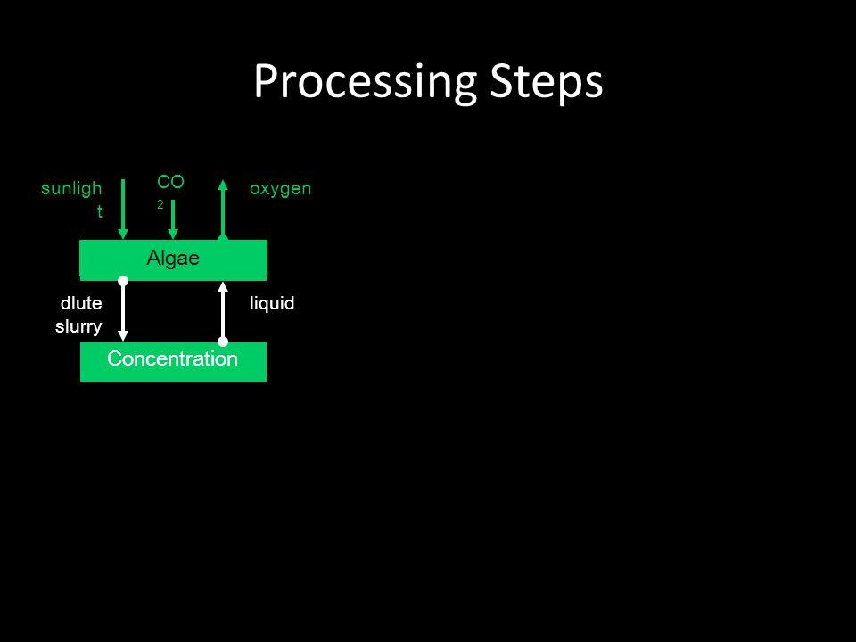 Processing Steps Algae Concentration dlute slurry liquid oxygensunligh t CO 2