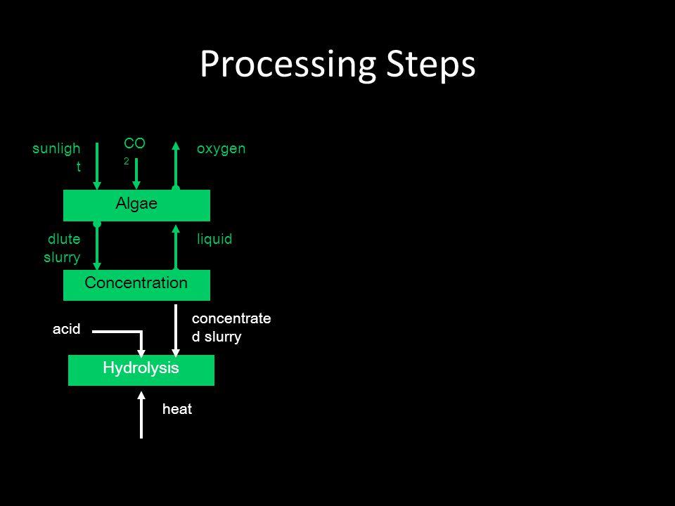 Processing Steps Algae Concentration dlute slurry liquid Hydrolysis acid concentrate d slurry heat oxygensunligh t CO 2