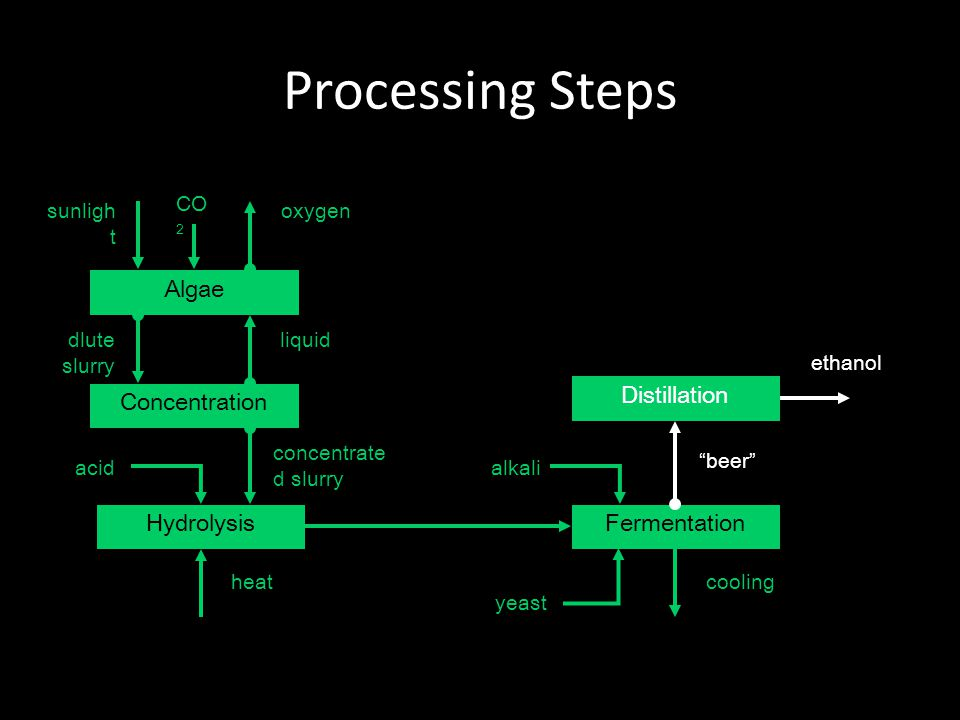 Processing Steps Algae Concentration liquid Hydrolysis concentrate d slurry Fermentation alkali heatcooling Distillation beer ethanol dlute slurry acid oxygensunligh t CO 2 yeast