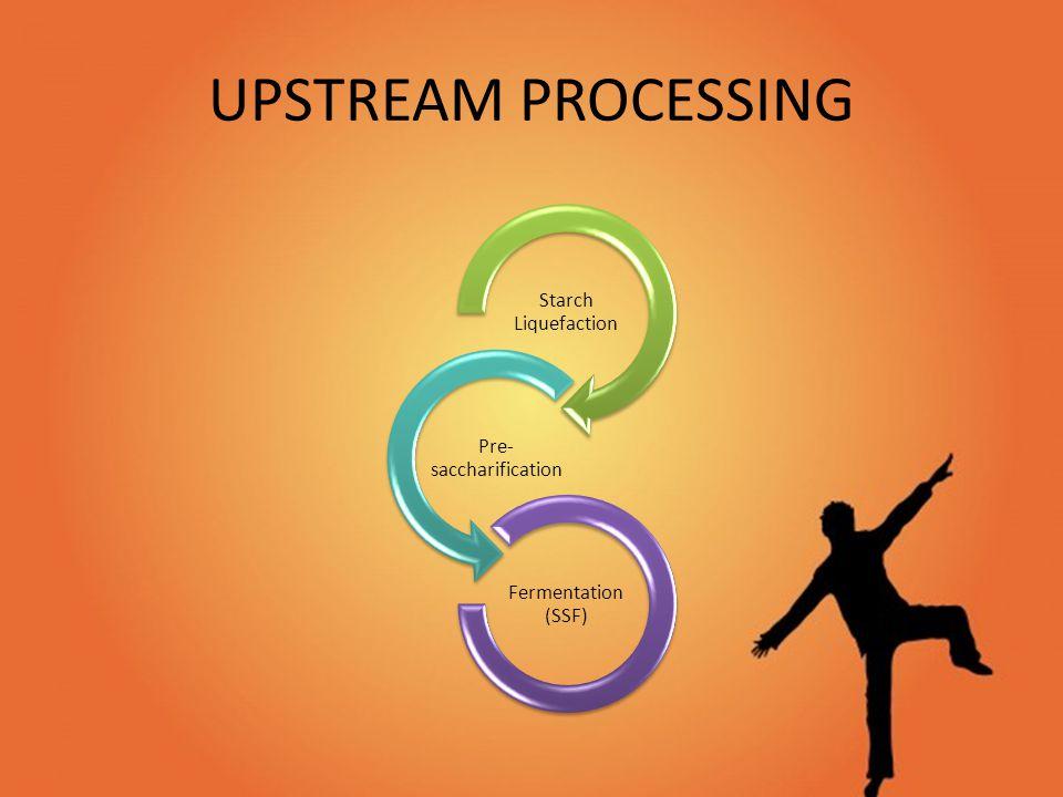UPSTREAM PROCESSING Starch Liquefaction Pre- saccharification Fermentation (SSF)