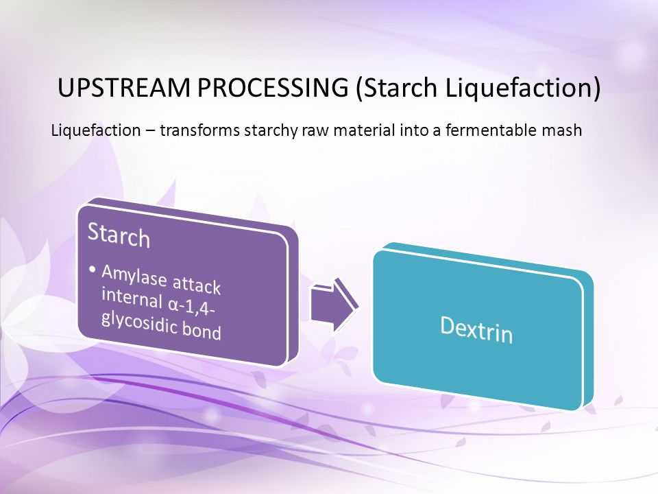 UPSTREAM PROCESSING (Starch Liquefaction) Liquefaction – transforms starchy raw material into a fermentable mash