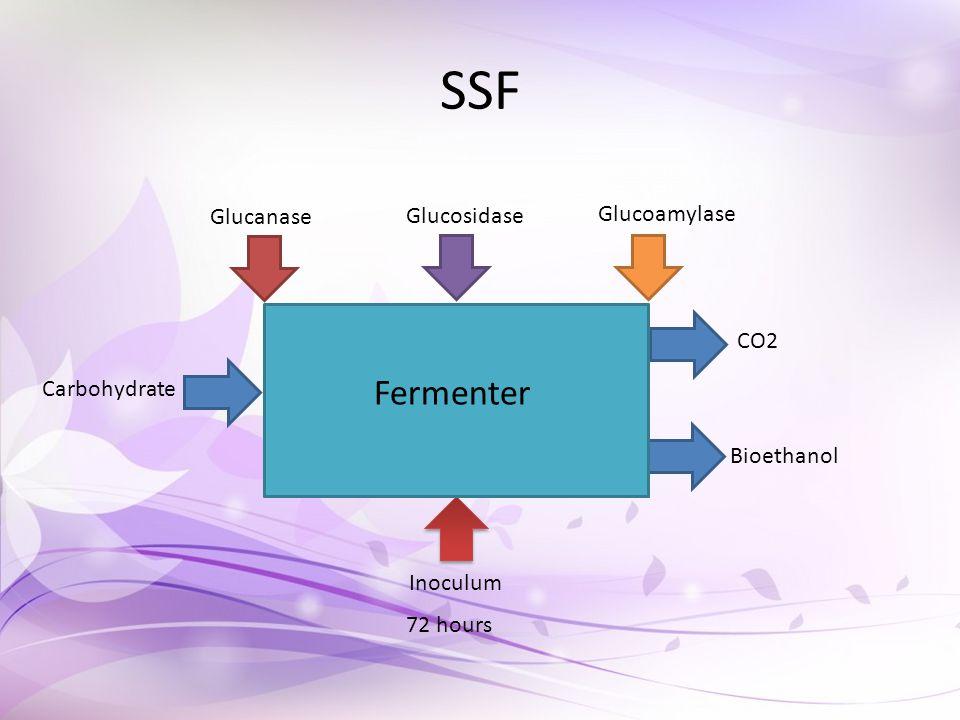 SSF Glucanase Glucosidase Glucoamylase Carbohydrate CO2 Bioethanol Inoculum Fermenter 72 hours