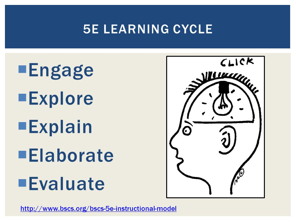 5E LEARNING CYCLE  Engage  Explore  Explain  Elaborate  Evaluate http://www.bscs.org/bscs-5e-instructional-model