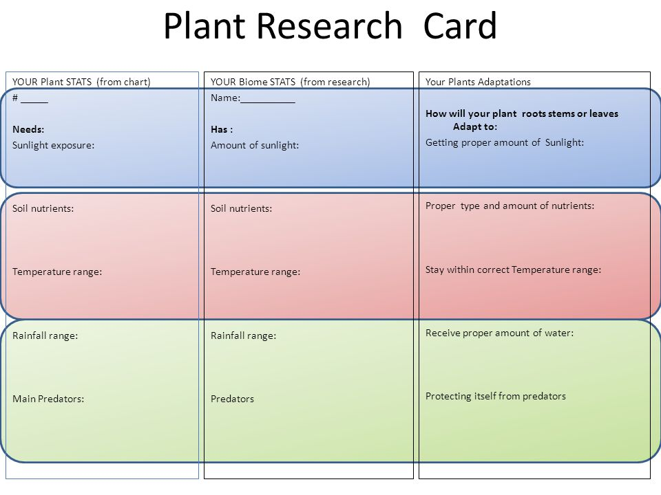 Plant Research Card YOUR Plant STATS (from chart) # _____ Needs: Sunlight exposure: Soil nutrients: Temperature range: Rainfall range: Main Predators: YOUR Biome STATS (from research) Name:__________ Has : Amount of sunlight: Soil nutrients: Temperature range: Rainfall range: Predators Your Plants Adaptations How will your plant roots stems or leaves Adapt to: Getting proper amount of Sunlight: Proper type and amount of nutrients: Stay within correct Temperature range: Receive proper amount of water: Protecting itself from predators