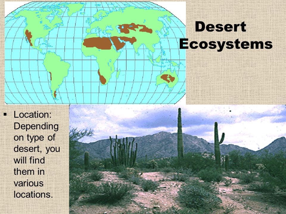 Desert Ecosystems  Location: Depending on type of desert, you will find them in various locations.