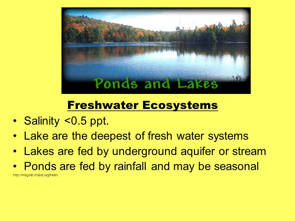 Freshwater Ecosystems Salinity <0.5 ppt.