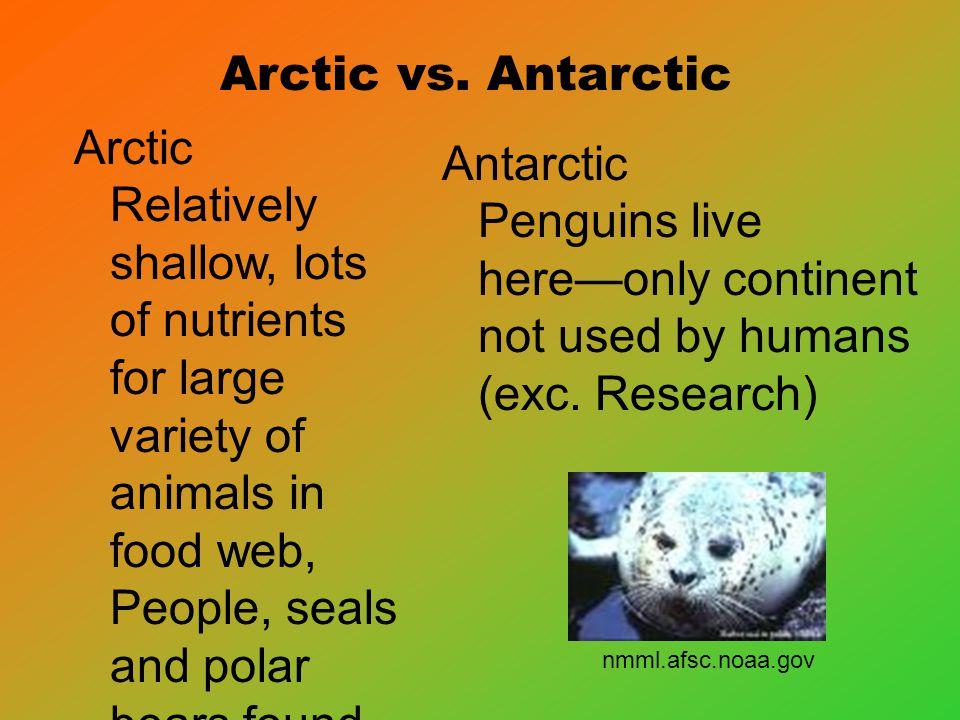 Arctic vs.