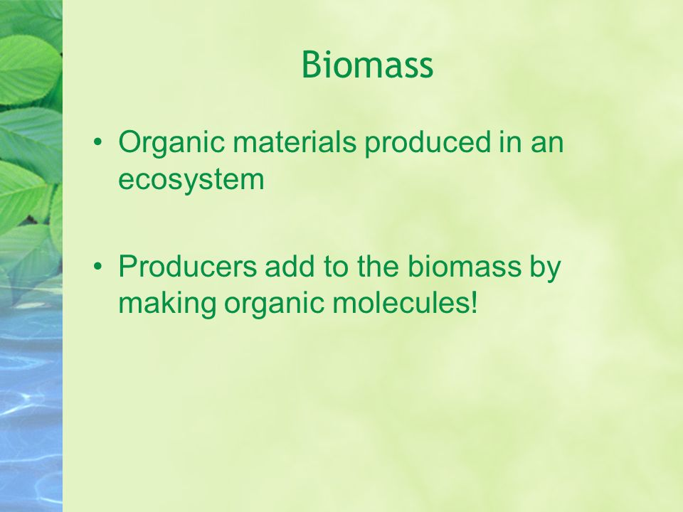Biomass Organic materials produced in an ecosystem Producers add to the biomass by making organic molecules!
