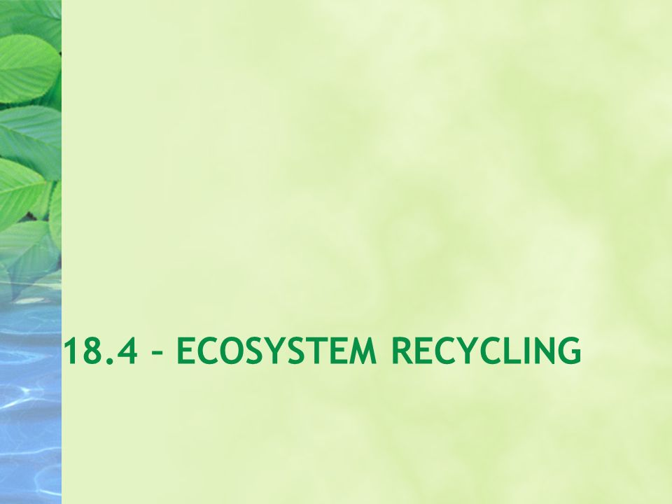 18.4 – ECOSYSTEM RECYCLING