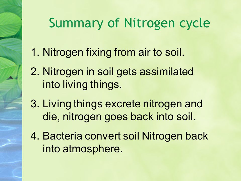 1.Nitrogen fixing from air to soil. 2.Nitrogen in soil gets assimilated into living things.