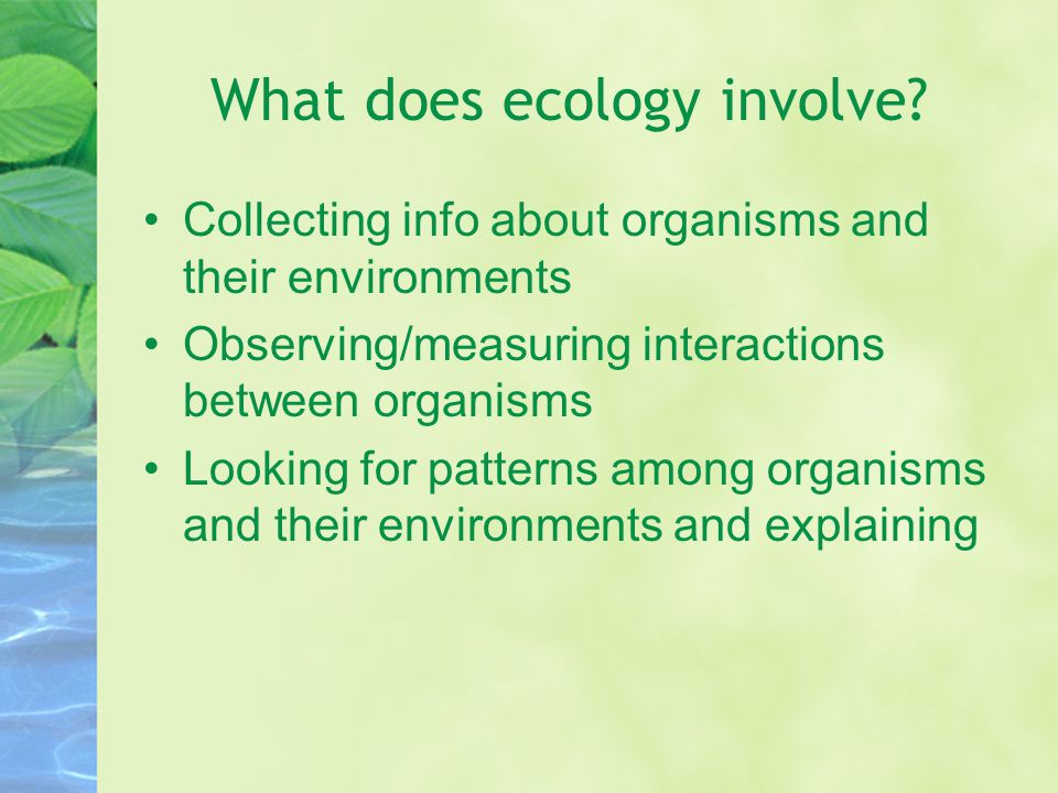 What does ecology involve.