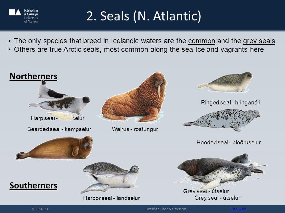 2.Seals (N.