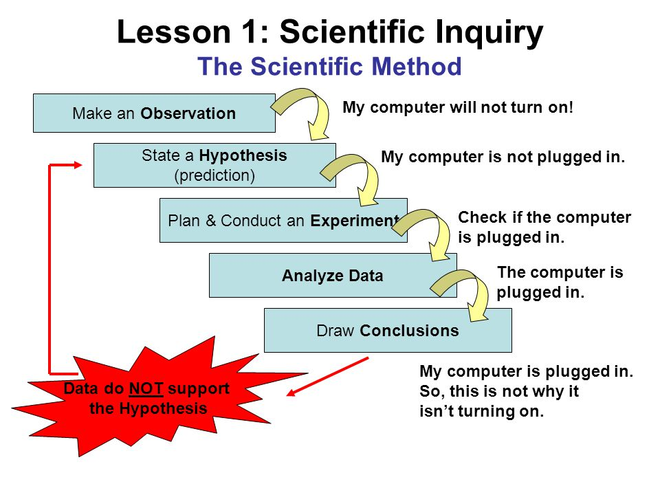 Lesson 1: Scientific Inquiry The Scientific Method Make an Observation State a Hypothesis (prediction) Plan & Conduct an Experiment Analyze Data Draw