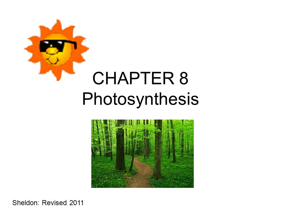 CHAPTER 8 Photosynthesis Sheldon: Revised 2011