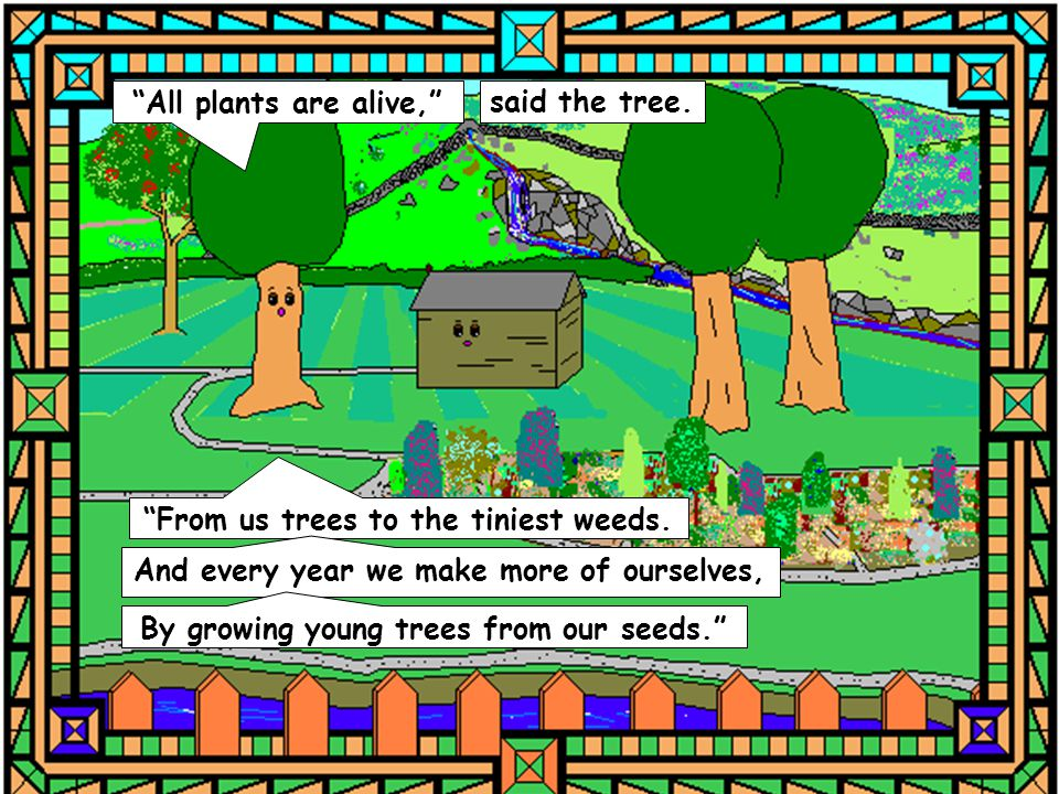 """""""All plants are alive,"""" said the tree. """"From us trees to the tiniest weeds. And every year we make more of ourselves, By growing young trees from our"""