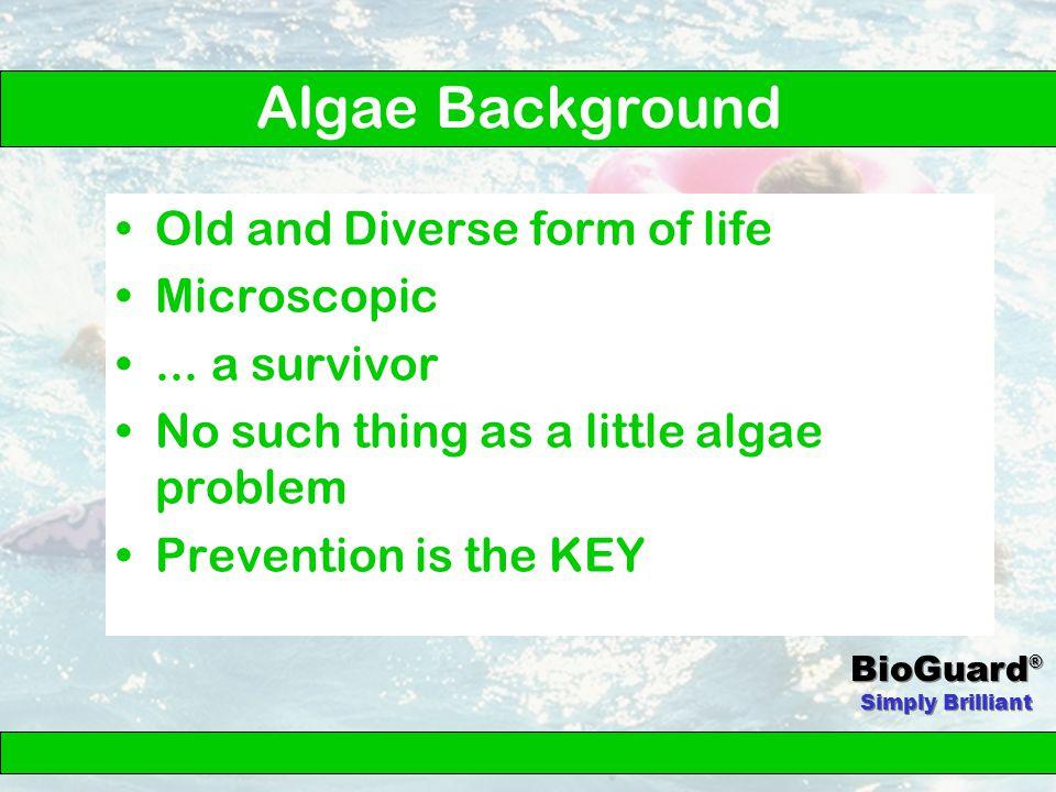Algae Control 3 Step