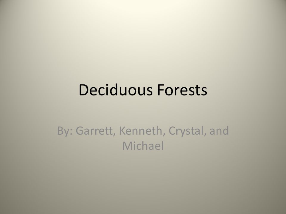 Deciduous Forests By: Garrett, Kenneth, Crystal, and Michael