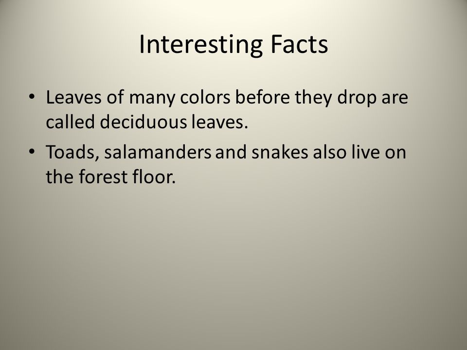 Interesting Facts Leaves of many colors before they drop are called deciduous leaves.