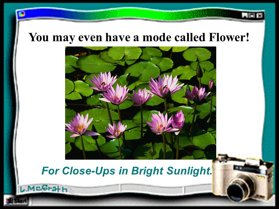 You may even have a mode called Flower! For Close-Ups in Bright Sunlight.