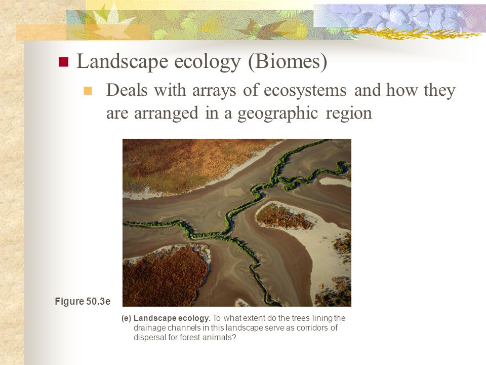 Landscape ecology (Biomes) Deals with arrays of ecosystems and how they are arranged in a geographic region Figure 50.3e (e) Landscape ecology.