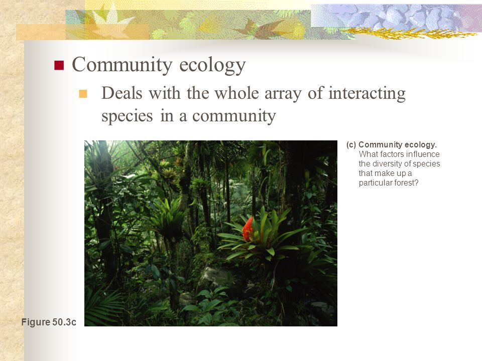 Community ecology Deals with the whole array of interacting species in a community Figure 50.3c (c) Community ecology.