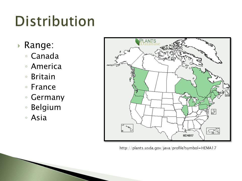 http://plants.usda.gov/java/profile symbol=HEMA17  Range: ◦ Canada ◦ America ◦ Britain ◦ France ◦ Germany ◦ Belgium ◦ Asia