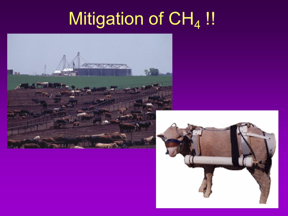 Mitigation of CH 4 !!