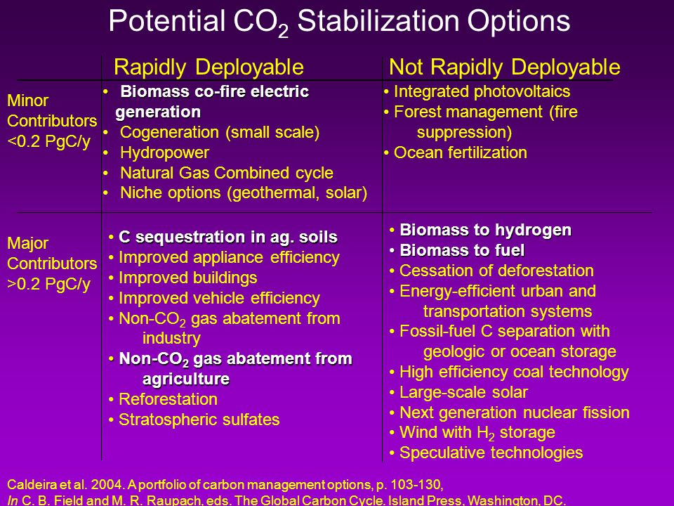 Potential CO 2 Stabilization Options Rapidly Deployable Biomass co-fire electric generation Biomass co-fire electric generation Cogeneration (small scale) Hydropower Natural Gas Combined cycle Niche options (geothermal, solar) Not Rapidly Deployable Integrated photovoltaics Forest management (fire suppression) Ocean fertilization C sequestration in ag.