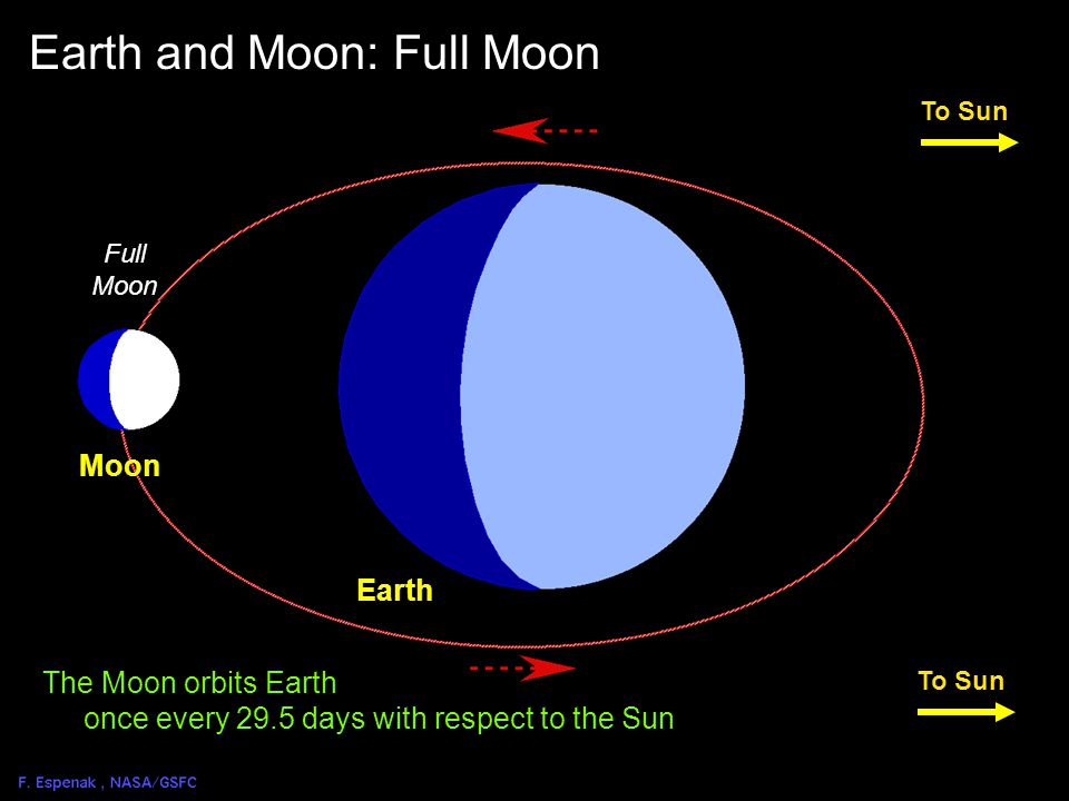 Solar Eclipse Geometry 1 Full Moon To Sun Earth Moon Earth and Moon: Full Moon The Moon orbits Earth once every 29.5 days with respect to the Sun