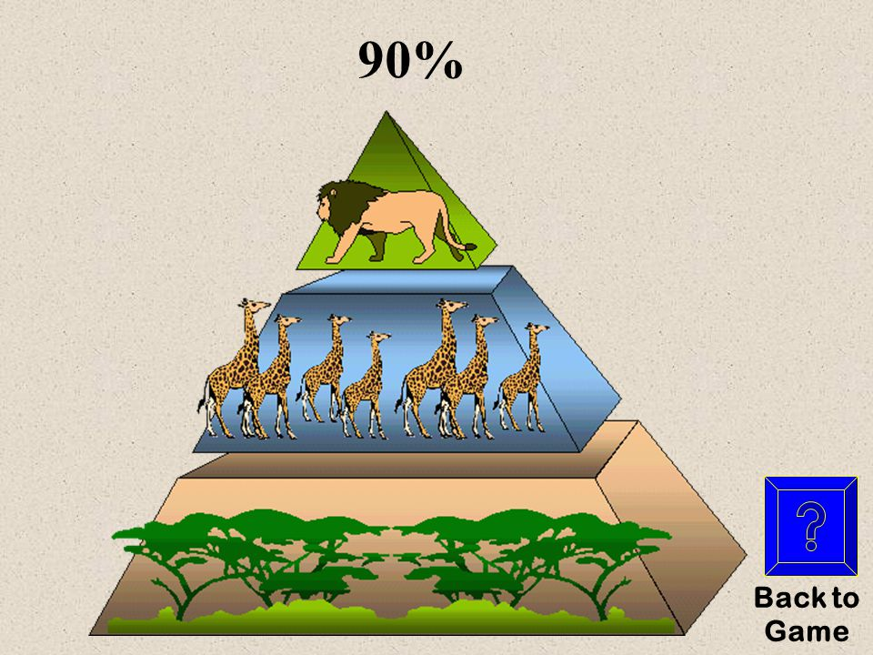 What is…? Pyramid Power for $200 Y es NO This is the amount of energy that is lost from one trophic level to the next (in percentile)