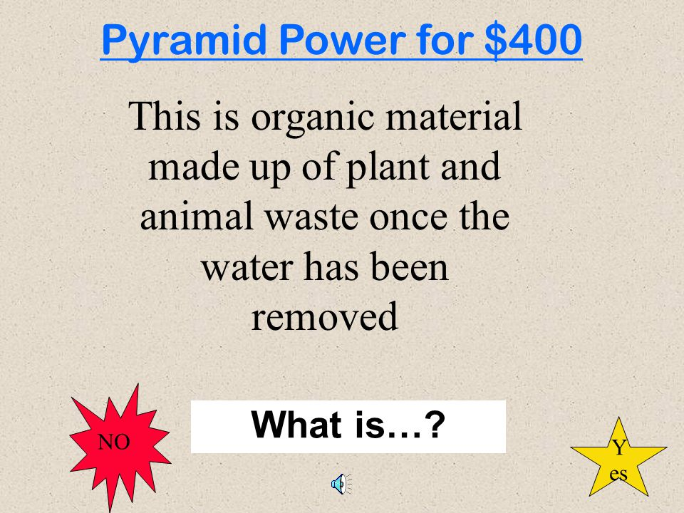 500 100 200 300 100 300 200 300 200 100 200 500 300 200 100 400 Holy Habitat Who Eats Whom Animal Activist Animal Activist Pyramid Power Re-cycle This