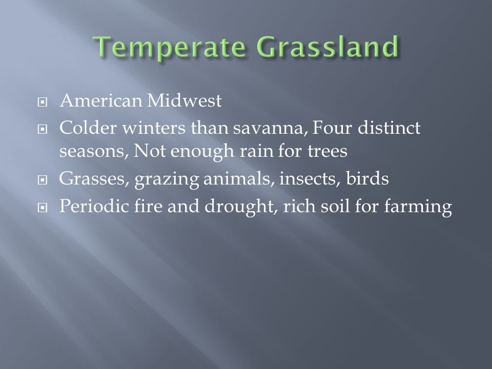  American Midwest  Colder winters than savanna, Four distinct seasons, Not enough rain for trees  Grasses, grazing animals, insects, birds  Periodic fire and drought, rich soil for farming