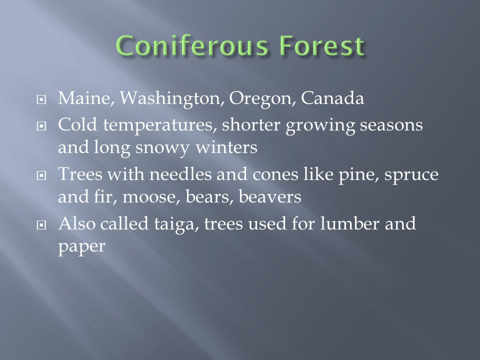  Maine, Washington, Oregon, Canada  Cold temperatures, shorter growing seasons and long snowy winters  Trees with needles and cones like pine, spruce and fir, moose, bears, beavers  Also called taiga, trees used for lumber and paper