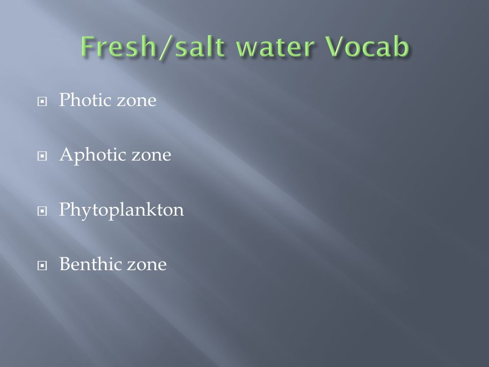  Photic zone  Aphotic zone  Phytoplankton  Benthic zone