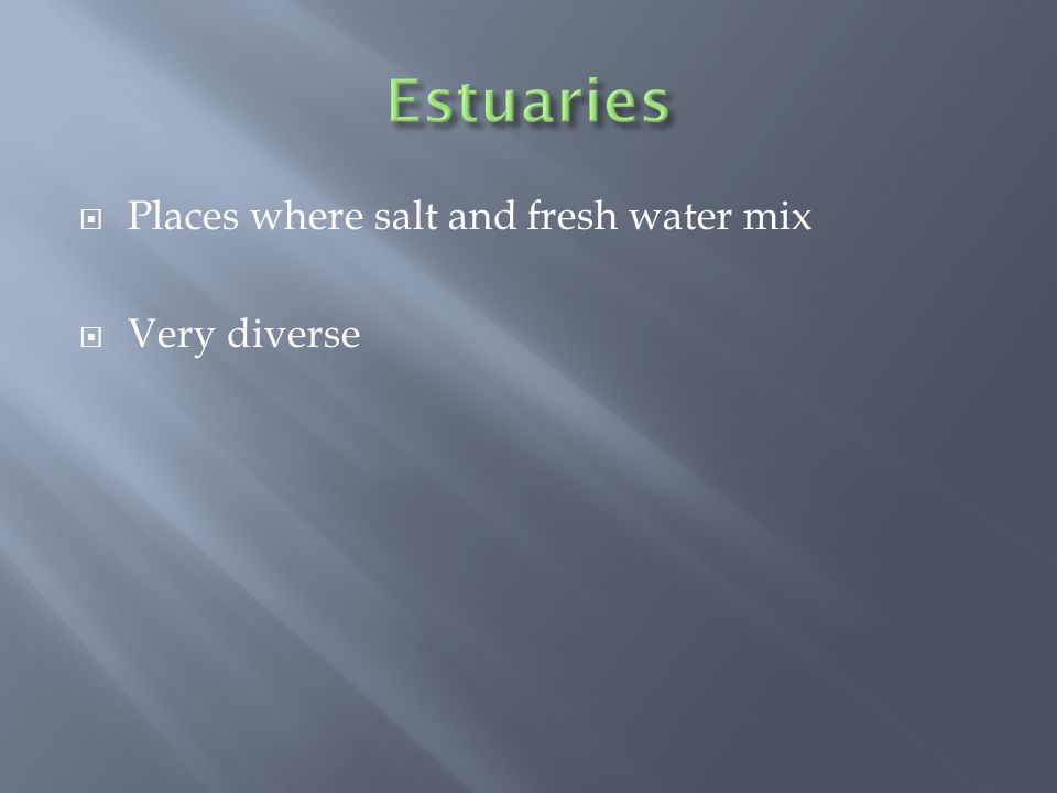  Places where salt and fresh water mix  Very diverse
