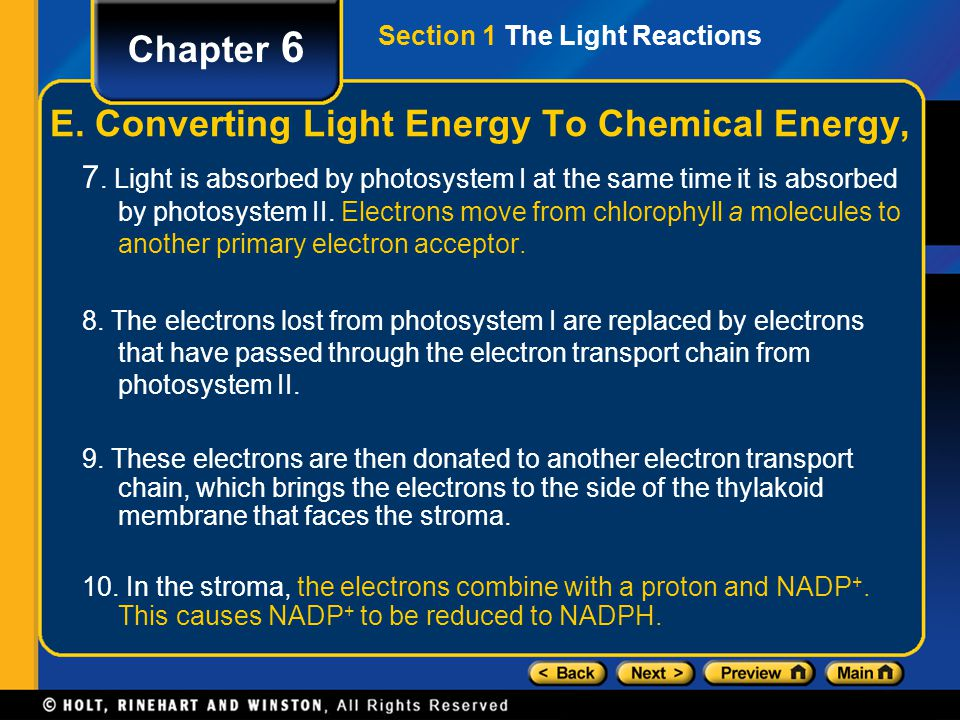 Section 1 The Light Reactions Chapter 6 7. Light is absorbed by photosystem I at the same time it is absorbed by photosystem II. Electrons move from c