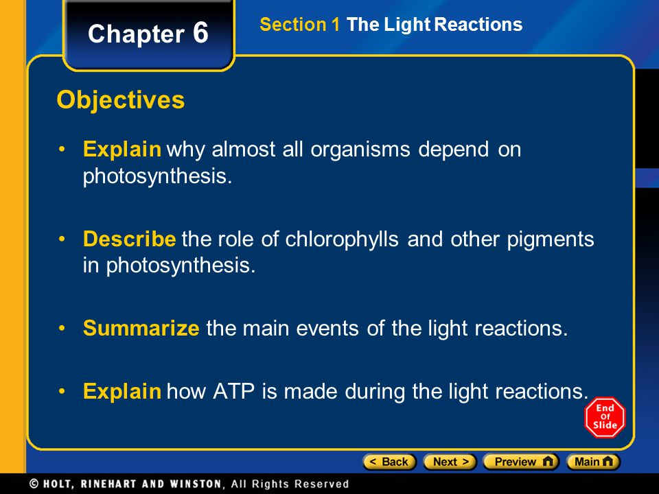 Section 1 The Light Reactions Chapter 6 C.Capturing Light Energy, continued 3.