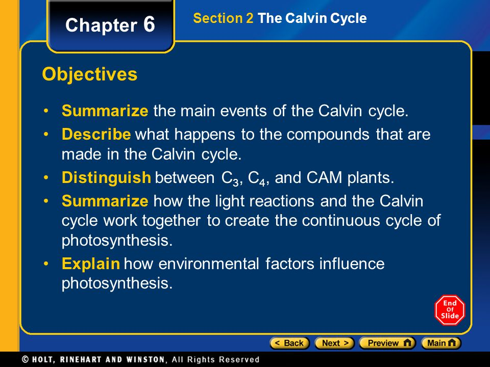 Section 2 The Calvin Cycle Chapter 6 Objectives Summarize the main events of the Calvin cycle. Describe what happens to the compounds that are made in