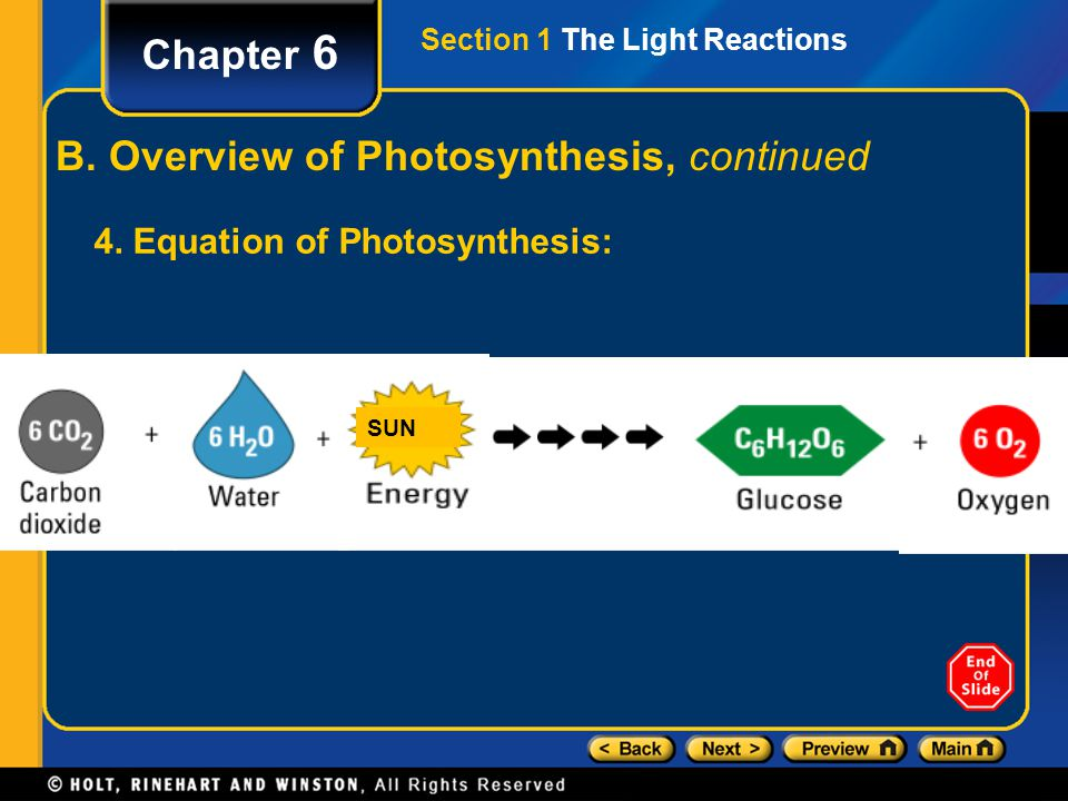 Section 1 The Light Reactions Chapter 6 B. Overview of Photosynthesis, continued 4. Equation of Photosynthesis: SUN