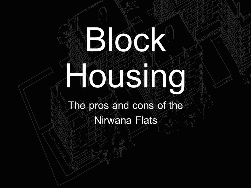 Block Housing The pros and cons of the Nirwana Flats