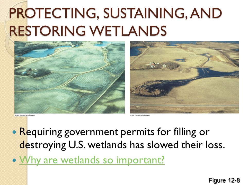 PROTECTING, SUSTAINING, AND RESTORING WETLANDS Requiring government permits for filling or destroying U.S.