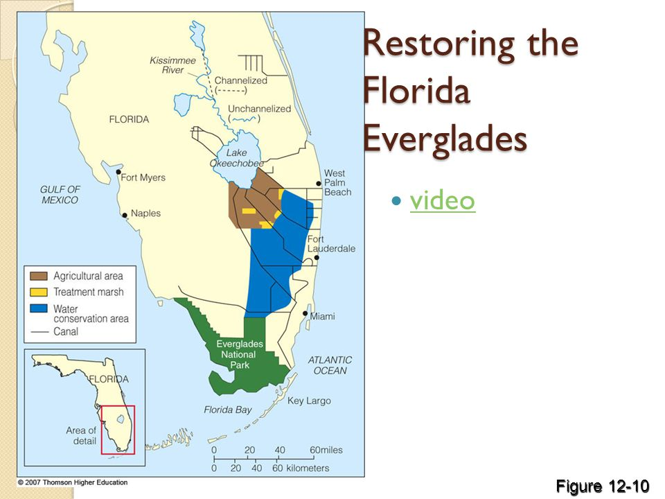 Restoring the Florida Everglades video Figure 12-10